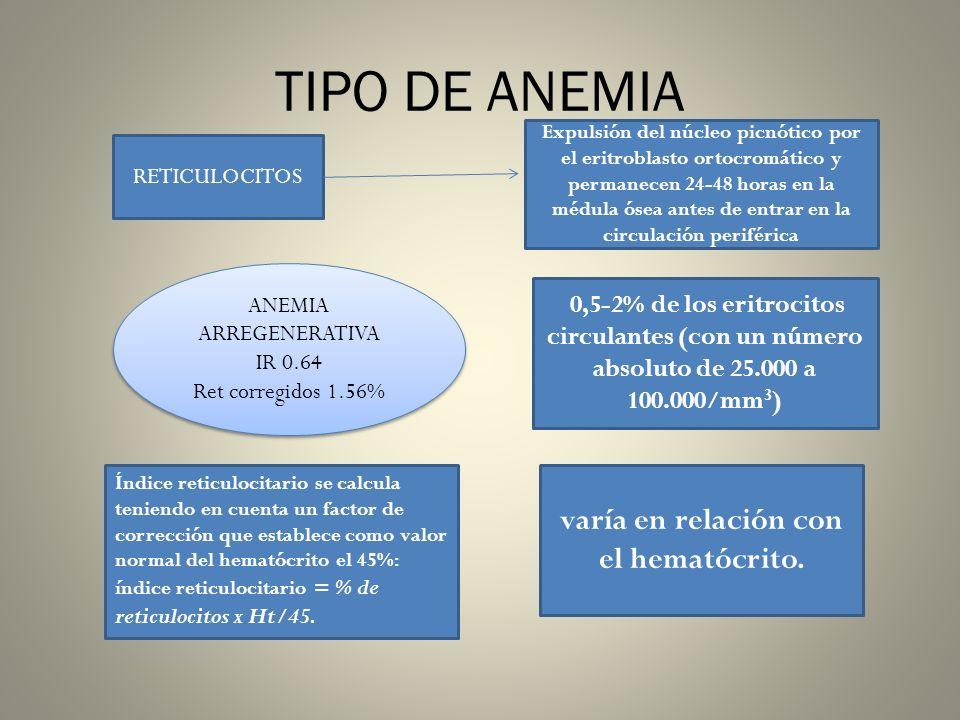 TIPO DE ANEMIA RETICULOCITOS Expulsión del núcleo picnótico por el eritroblasto ortocromático y permanecen 24-48 horas en la médula ósea antes de entr