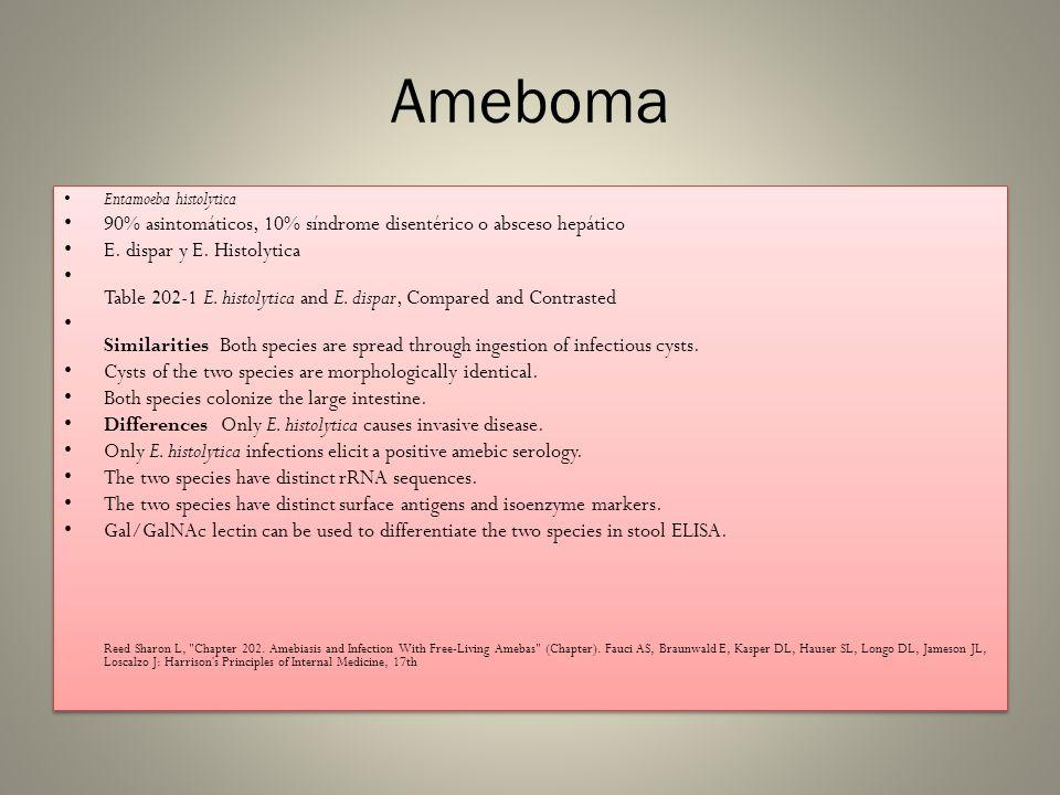 Ameboma Entamoeba histolytica 90% asintomáticos, 10% síndrome disentérico o absceso hepático E. dispar y E. Histolytica Table 202-1 E. histolytica and