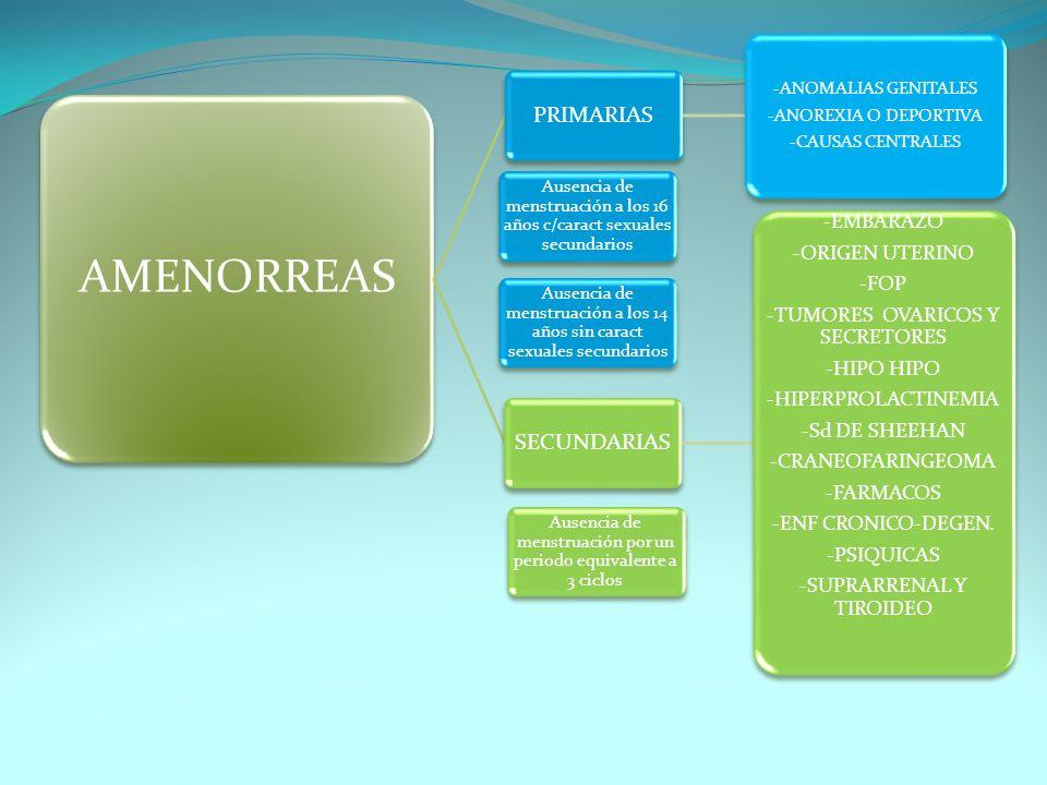 AMENORREAS PRIMARIAS -ANOMALIAS GENITALES -ANOREXIA O DEPORTIVA -CAUSAS CENTRALES SECUNDARIAS -EMBARAZO -ORIGEN UTERINO -FOP -TUMORES OVARICOS Y SECRE