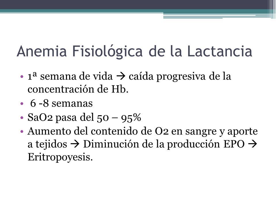 Aumento del O2 en sangre y aporte Disminución del EPO Eritropoyesis (inhibición) Hb desciende, Fe almacena Sensores O2 (Hígado y riñon) Hipoxia