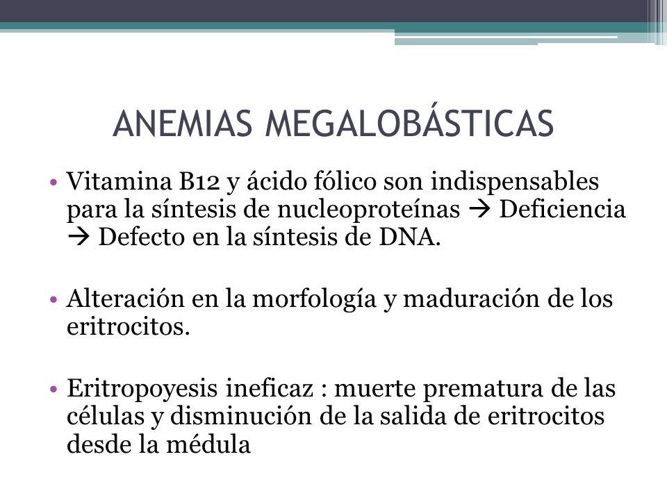 DEFICIENCIA DE ÁCIDO FÓLICO Folatos Poliglutamada Monoglutamato (ácido fólico).