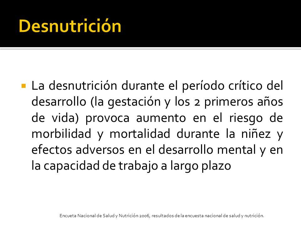 La desnutrición durante el período crítico del desarrollo (la gestación y los 2 primeros años de vida) provoca aumento en el riesgo de morbilidad y mo