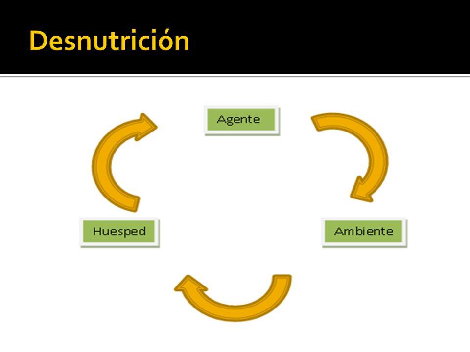 Etiología: 1) Aporte deficiente 2) Causas orgánicas: Lesiones anatómicas o funcionales del tracto digestivo.