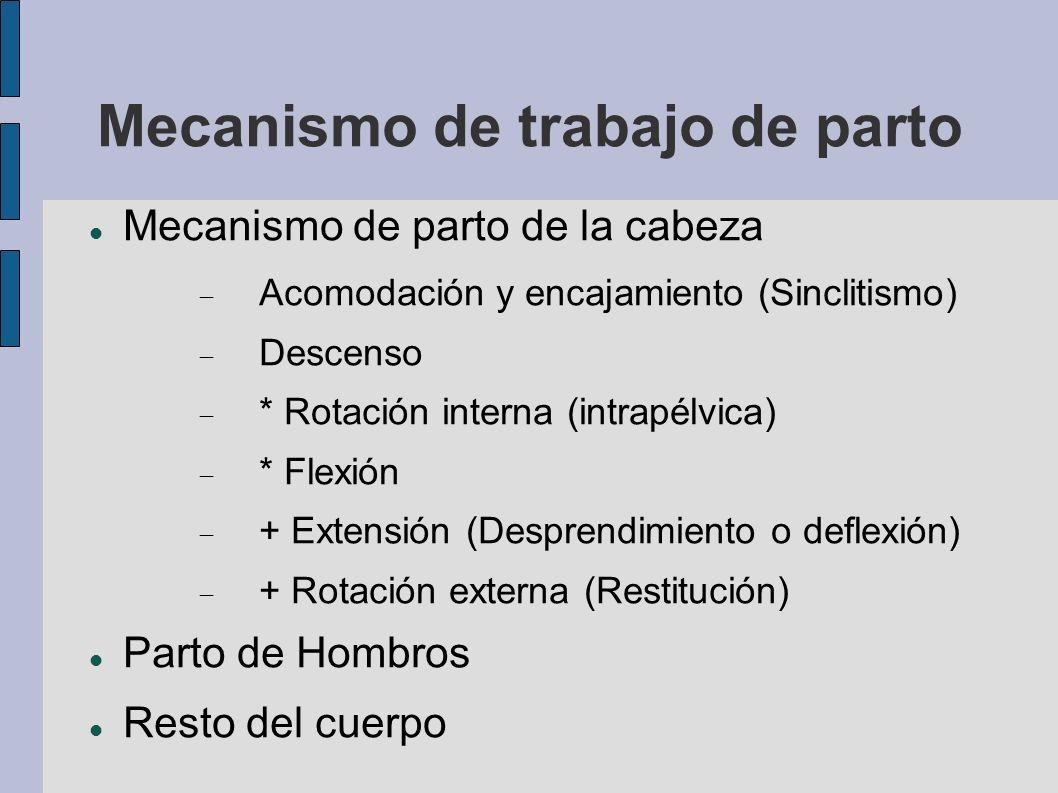 Mecanismo de trabajo de parto Mecanismo de parto de la cabeza Acomodación y encajamiento (Sinclitismo) Descenso * Rotación interna (intrapélvica) * Fl