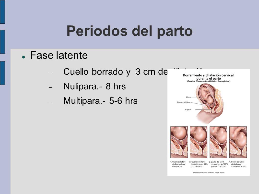 Periodos del parto Fase latente Cuello borrado y 3 cm de dilatación Nulipara.- 8 hrs Multipara.- 5-6 hrs
