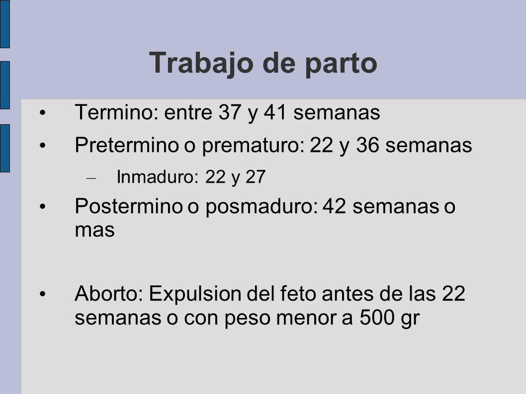 Trabajo de parto Termino: entre 37 y 41 semanas Pretermino o prematuro: 22 y 36 semanas – Inmaduro: 22 y 27 Postermino o posmaduro: 42 semanas o mas A