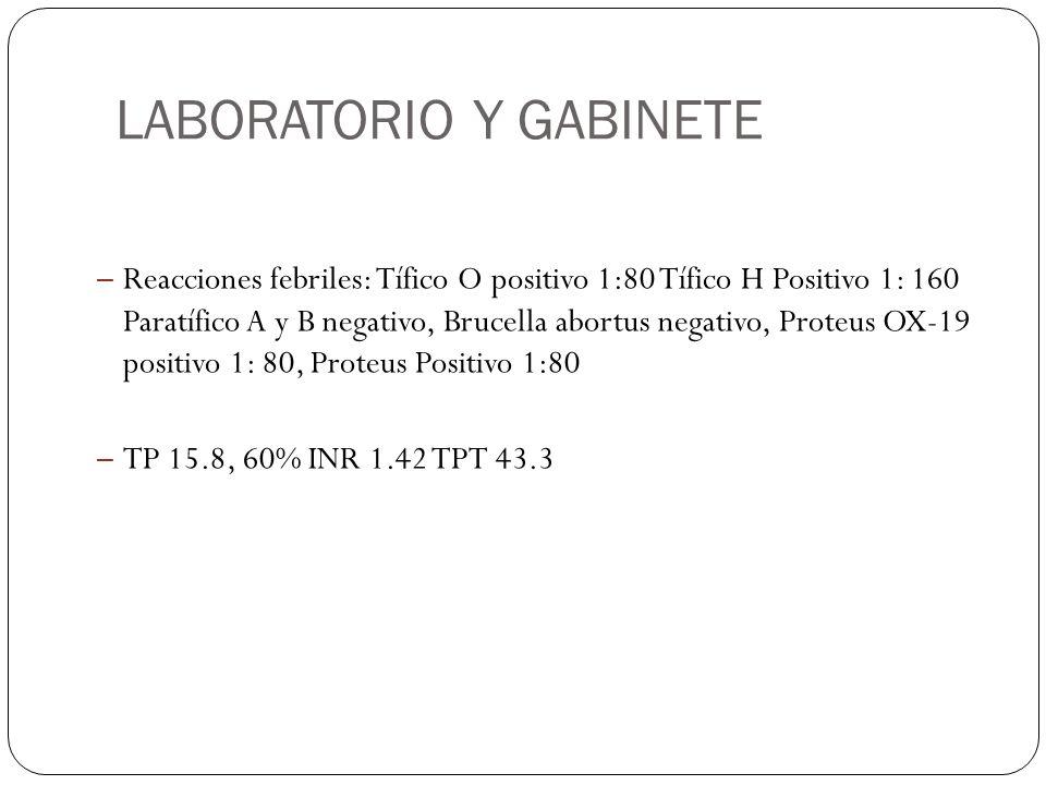 LABORATORIO Y GABINETE – Reacciones febriles: Tífico O positivo 1:80 Tífico H Positivo 1: 160 Paratífico A y B negativo, Brucella abortus negativo, Pr