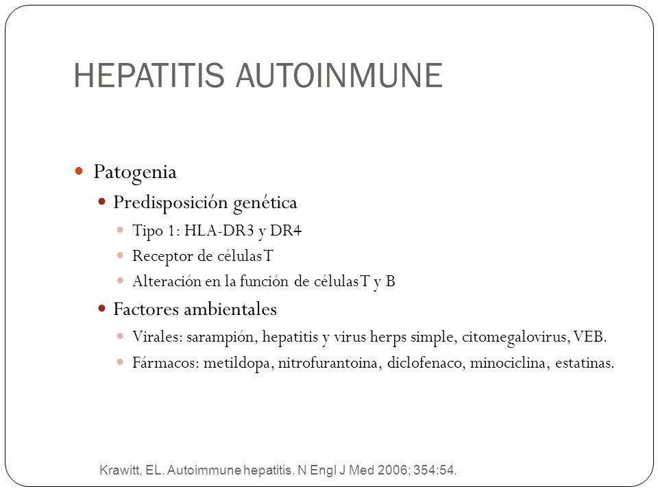 HEPATITIS AUTOINMUNE Krawitt, EL. Autoimmune hepatitis. N Engl J Med 2006; 354:54. Patogenia Predisposición genética Tipo 1: HLA-DR3 y DR4 Receptor de