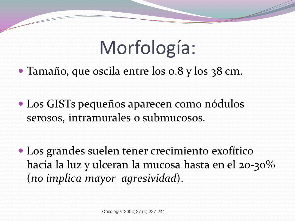Morfología: Tamaño, que oscila entre los 0.8 y los 38 cm. Los GISTs pequeños aparecen como nódulos serosos, intramurales o submucosos. Los grandes sue