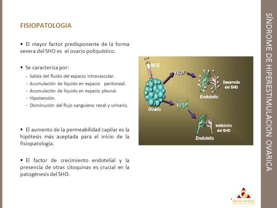 FISIOPATOLOGIA El mayor factor predisponente de la forma severa del SHO es el ovario poliquístico. Se caracteriza por: - Salida del fluido del espacio