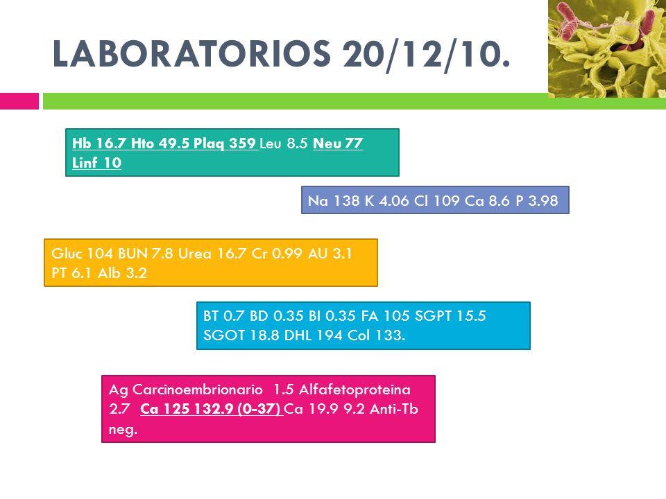 LABORATORIOS 20/12/10. Ag Carcinoembrionario 1.5 Alfafetoproteina 2.7 Ca 125 132.9 (0-37) Ca 19.9 9.2 Anti-Tb neg. BT 0.7 BD 0.35 BI 0.35 FA 105 SGPT