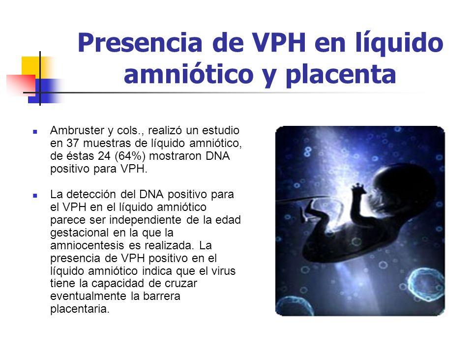 Presencia de VPH en líquido amniótico y placenta Ambruster y cols., realizó un estudio en 37 muestras de líquido amniótico, de éstas 24 (64%) mostraro