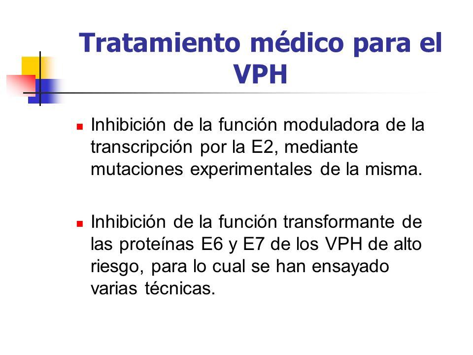 Tratamiento médico para el VPH Inhibición de la función moduladora de la transcripción por la E2, mediante mutaciones experimentales de la misma. Inhi