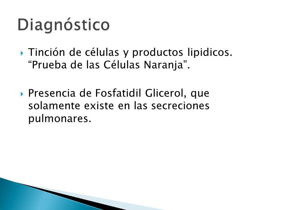 Tinción de células y productos lipidicos.Prueba de las Células Naranja.