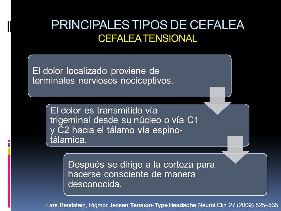 PRINCIPALES TIPOS DE CEFALEA CEFALEA TENSIONAL El dolor localizado proviene de terminales nerviosos nociceptivos. El dolor es transmitido vía trigemin