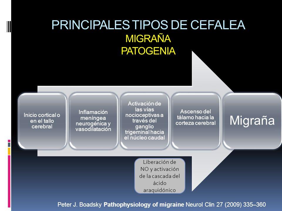 PRINCIPALES TIPOS DE CEFALEA MIGRAÑA PATOGENIA Inicio cortical o en el tallo cerebral Inflamación meníngea neurogénica y vasodilatación Activación de