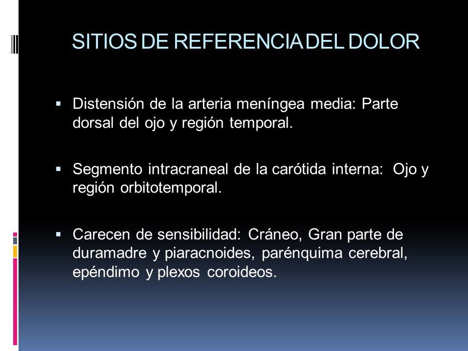 SITIOS DE REFERENCIA DEL DOLOR Distensión de la arteria meníngea media: Parte dorsal del ojo y región temporal. Segmento intracraneal de la carótida i