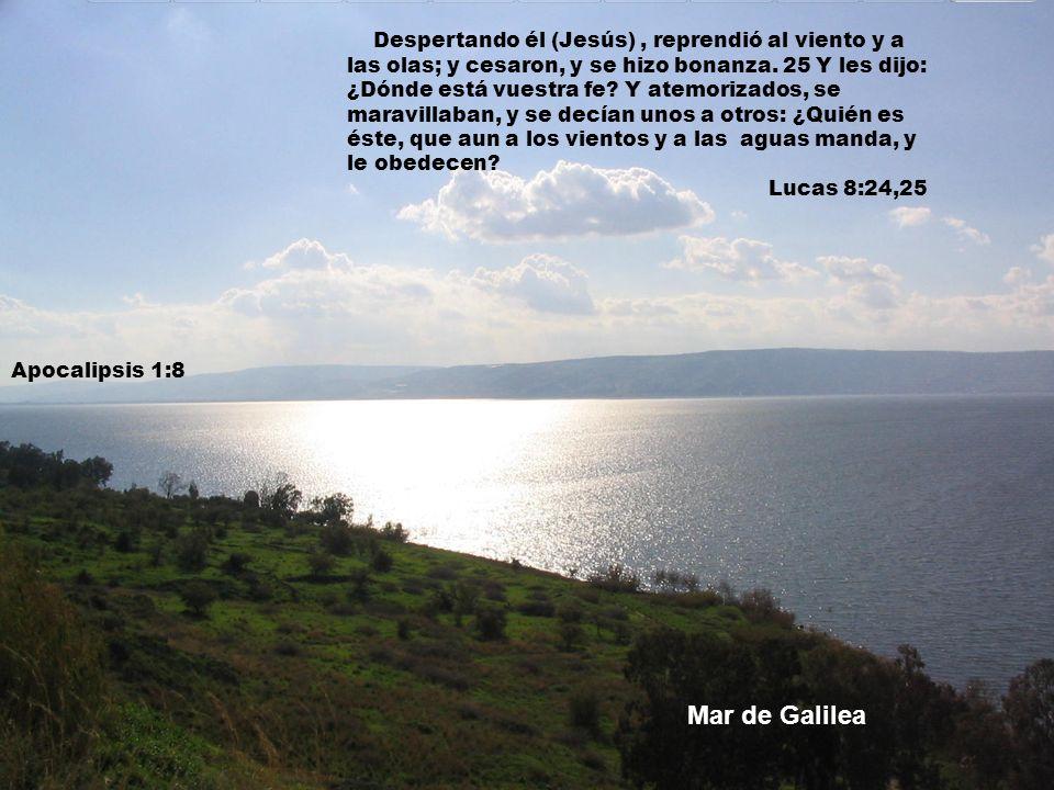 Despertando él (Jesús), reprendió al viento y a las olas; y cesaron, y se hizo bonanza. 25 Y les dijo: ¿Dónde está vuestra fe? Y atemorizados, se mara