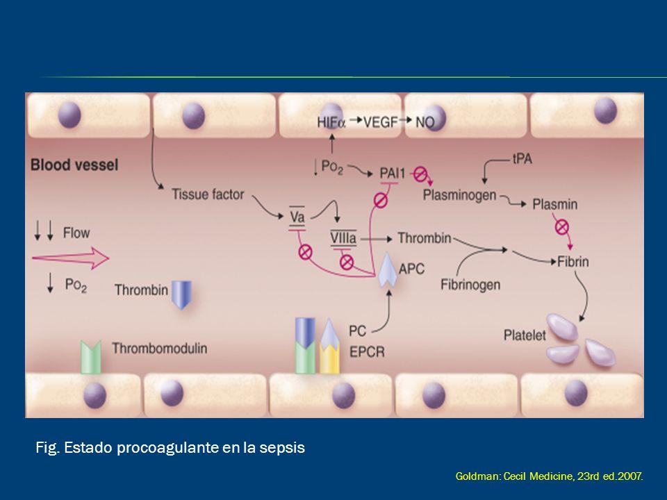 Fig. Estado procoagulante en la sepsis Goldman: Cecil Medicine, 23rd ed.2007.