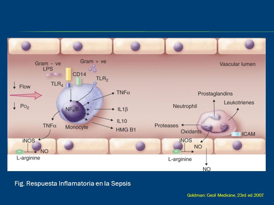 Fig. Respuesta Inflamatoria en la Sepsis Goldman: Cecil Medicine, 23rd ed.2007.