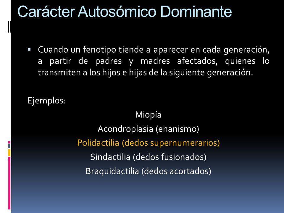 Carácter Autosómico Dominante Cuando un fenotipo tiende a aparecer en cada generación, a partir de padres y madres afectados, quienes lo transmiten a