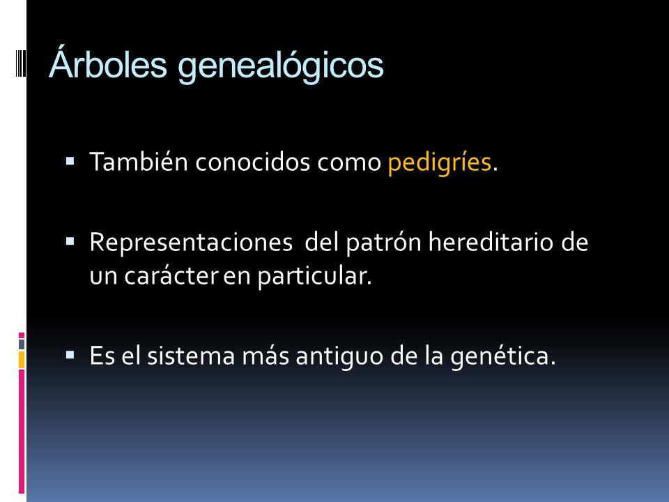 Árboles genealógicos También conocidos como pedigríes. Representaciones del patrón hereditario de un carácter en particular. Es el sistema más antiguo
