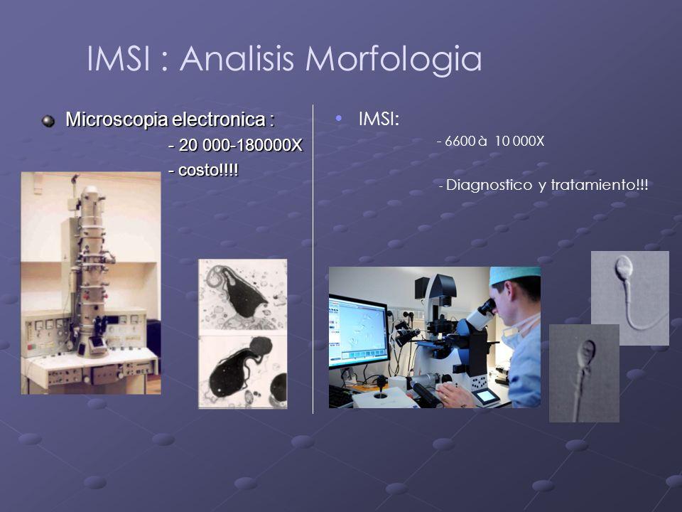 Microscopia electronica : - 20 000-180000X - 20 000-180000X - costo!!!! - costo!!!! IMSI : Analisis Morfologia IMSI: - 6600 à 10 000X - Diagnostico y