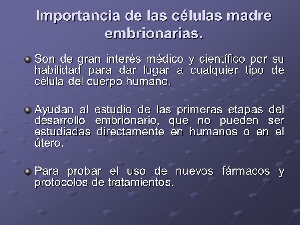 Importancia de las células madre embrionarias. Son de gran interés médico y científico por su habilidad para dar lugar a cualquier tipo de célula del