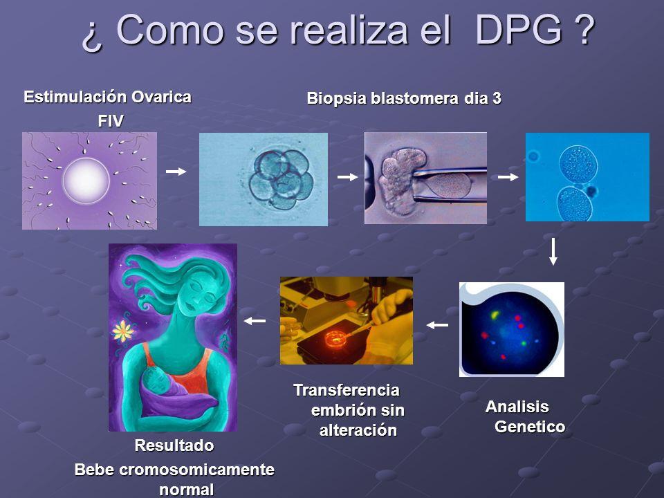 ¿ Como se realiza el DPG ? Estimulación Ovarica FIV Biopsia blastomera dia 3 Analisis Genetico Transferencia embrión sin alteración Resultado Bebe cro
