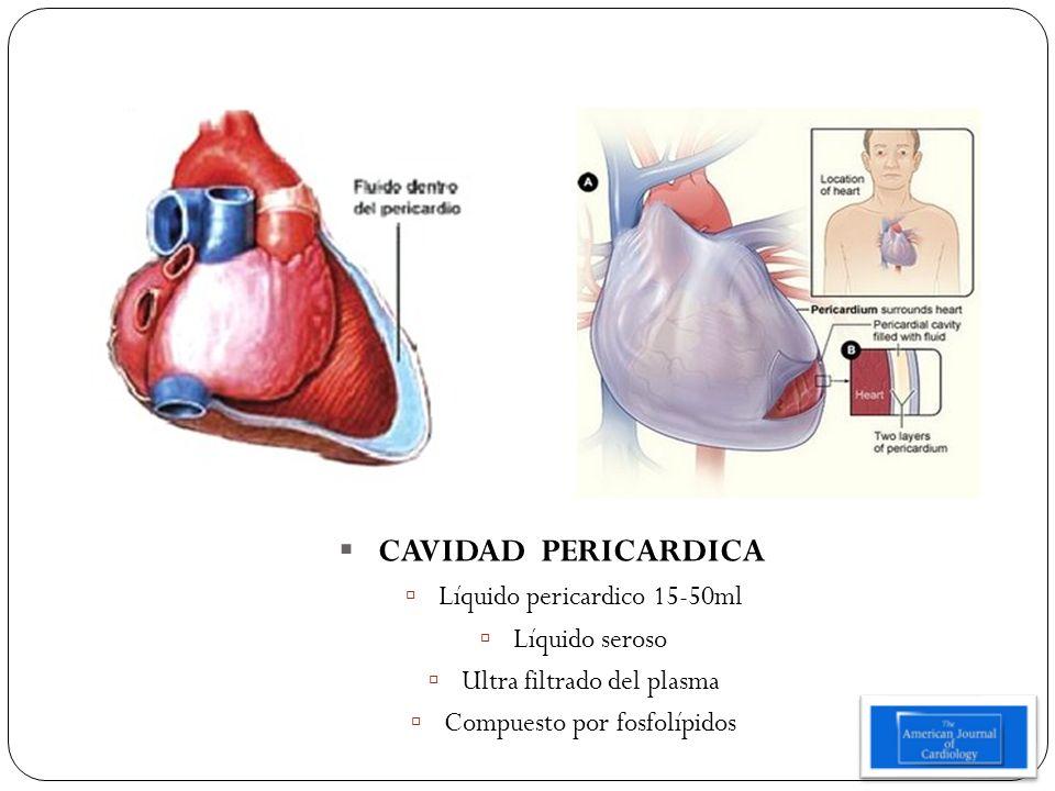 CAVIDAD PERICARDICA Líquido pericardico 15-50ml Líquido seroso Ultra filtrado del plasma Compuesto por fosfolípidos