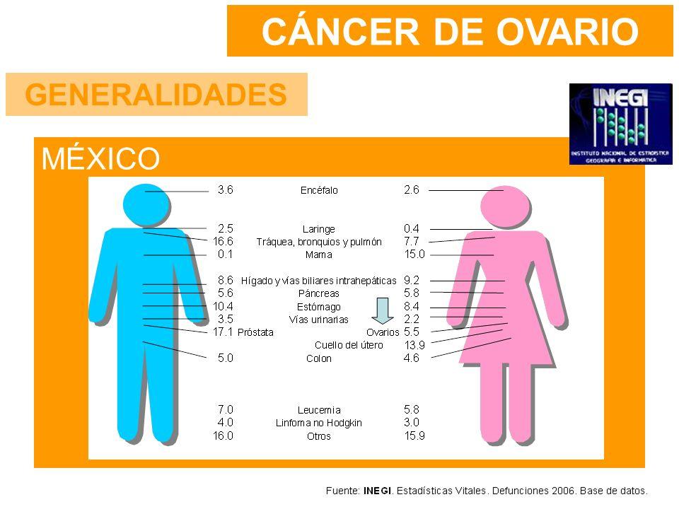 Países industrializados: tasas más altas No se han demostrado carcinógenos específicos Menos del 5% de los cánceres epiteliales tienen un patrón hereditario –2 o más familiares de primer grado –Historia personal de cáncer de mama o endometrio Nuliparidad con ovulación incesante CÁNCER DE OVARIO FACTORES DE RIESGO