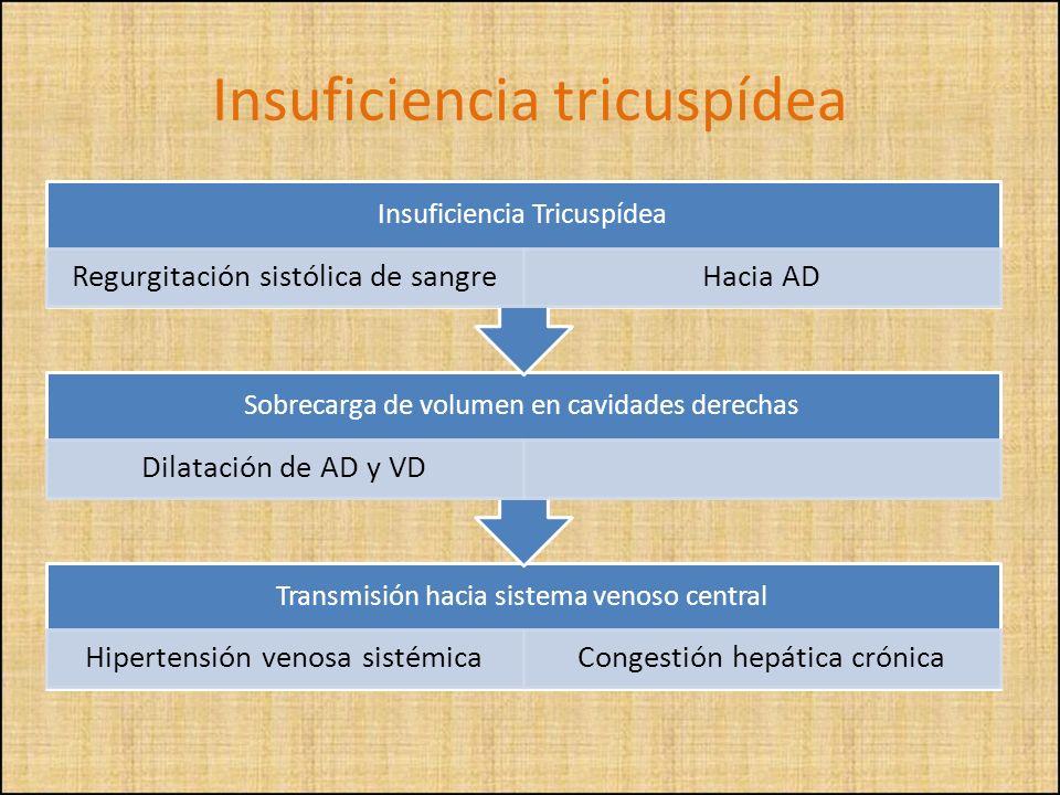 Transmisión hacia sistema venoso central Hipertensión venosa sistémicaCongestión hepática crónica Sobrecarga de volumen en cavidades derechas Dilataci