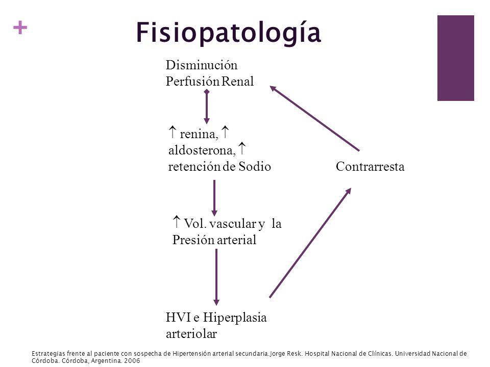 + Fisiopatología Disminución Perfusión Renal renina, aldosterona, retención de Sodio Vol. vascular y la Presión arterial HVI e Hiperplasia arteriolar