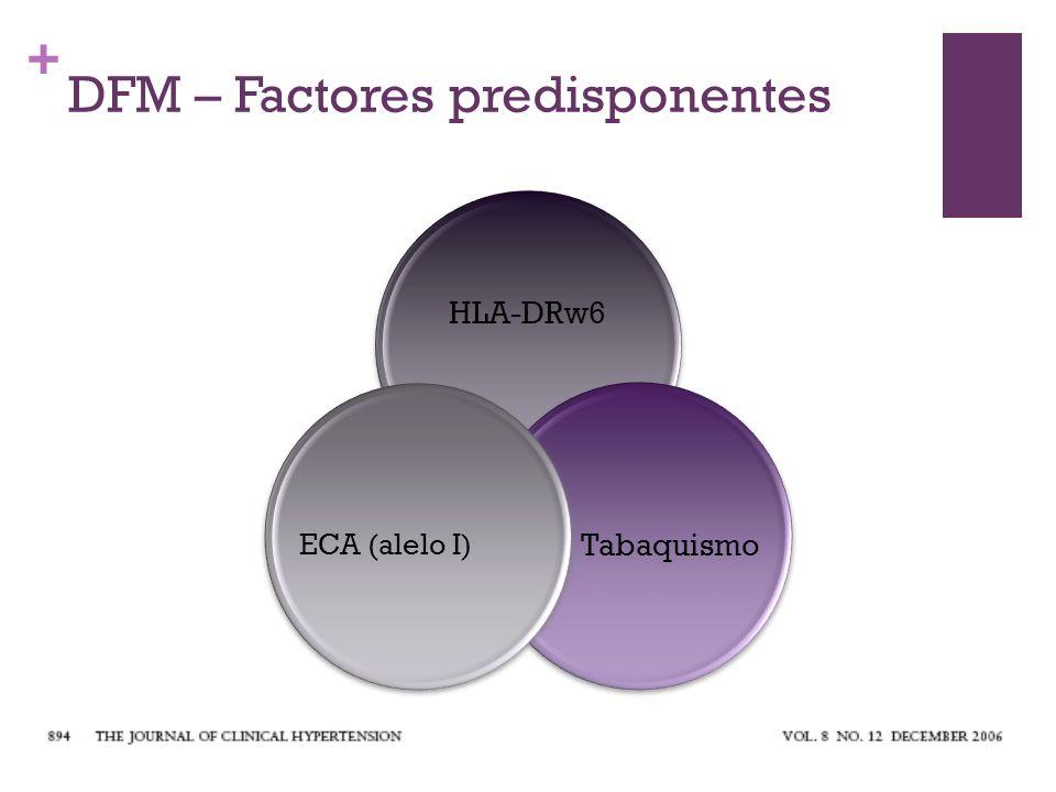 + DFM – Factores predisponentes HLA-DRw6 Tabaquismo ECA (alelo I)