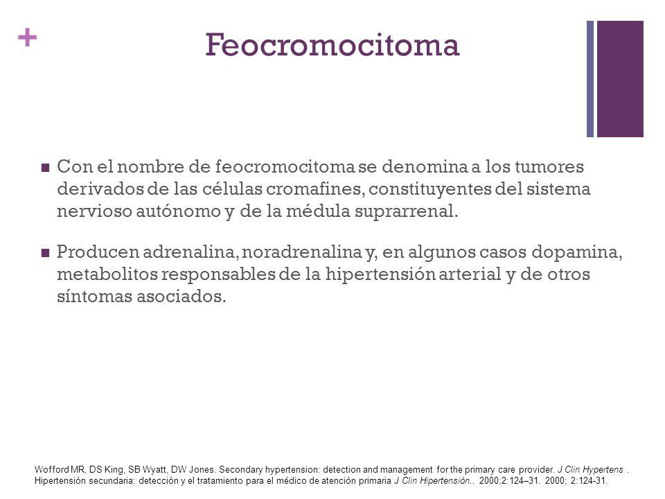 + Feocromocitoma Con el nombre de feocromocitoma se denomina a los tumores derivados de las células cromafines, constituyentes del sistema nervioso au