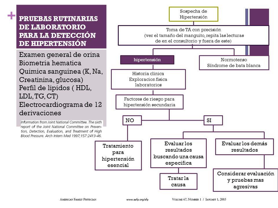 + PRUEBAS RUTINARIAS DE LABORATORIO PARA LA DETECCIÓN DE HIPERTENSIÓN Examen general de orina Biometria hematica Quimica sanguinea (K, Na, Creatinina,