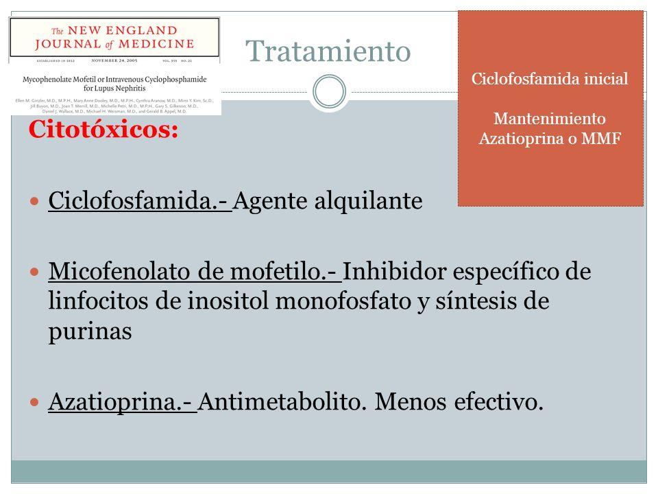 Tratamiento Citotóxicos: Ciclofosfamida.- Agente alquilante Micofenolato de mofetilo.- Inhibidor específico de linfocitos de inositol monofosfato y sí