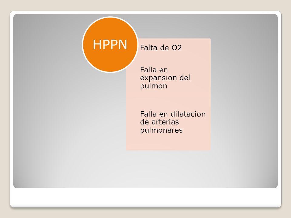 Falta de O2 Falla en expansion del pulmon Falla en dilatacion de arterias pulmonares HPPN