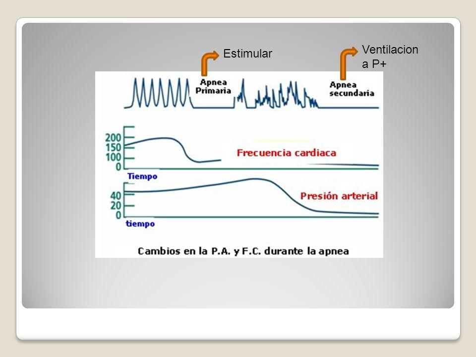 Estimular Ventilacion a P+