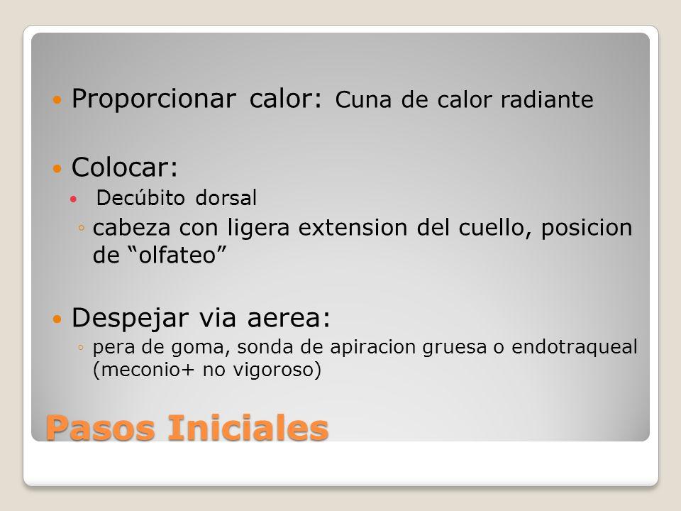 Pasos Iniciales Proporcionar calor: Cuna de calor radiante Colocar: Decúbito dorsal cabeza con ligera extension del cuello, posicion de olfateo Despej