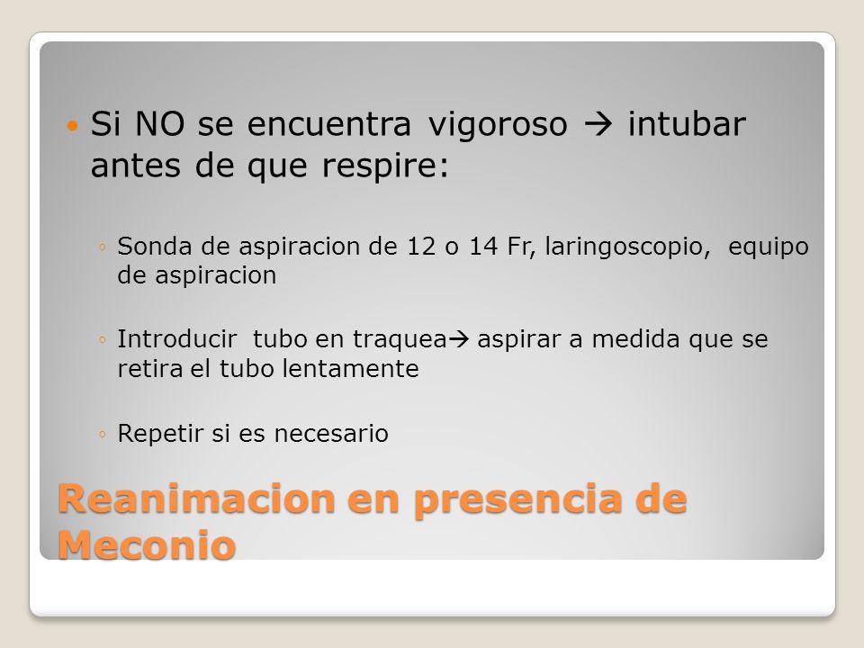 Reanimacion en presencia de Meconio Si NO se encuentra vigoroso intubar antes de que respire: Sonda de aspiracion de 12 o 14 Fr, laringoscopio, equipo