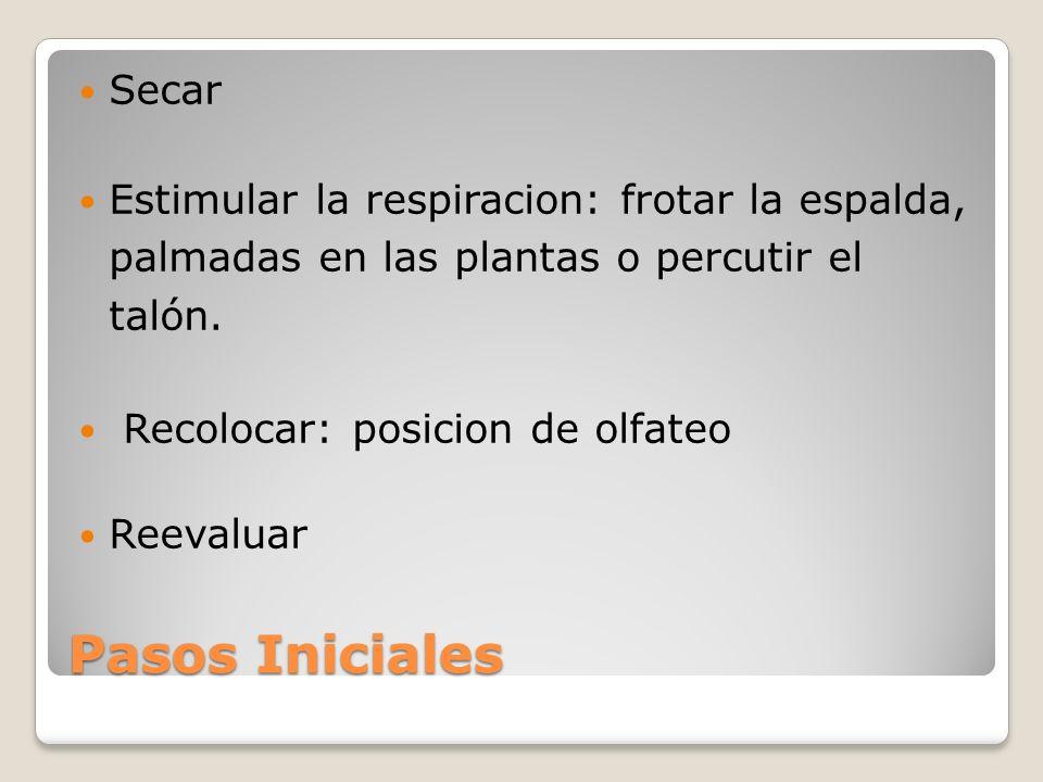 Pasos Iniciales Secar Estimular la respiracion: frotar la espalda, palmadas en las plantas o percutir el talón. Recolocar: posicion de olfateo Reevalu