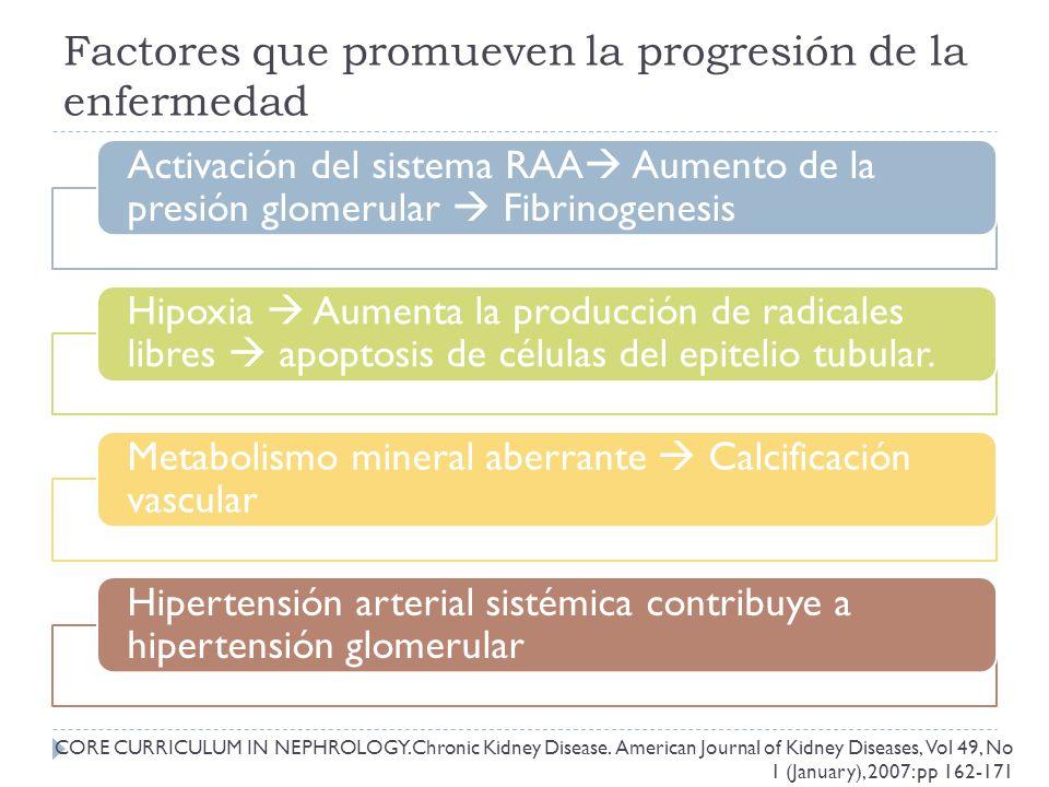 Factores que promueven la progresión de la enfermedad Activación del sistema RAA Aumento de la presión glomerular Fibrinogenesis Hipoxia Aumenta la producción de radicales libres apoptosis de células del epitelio tubular.