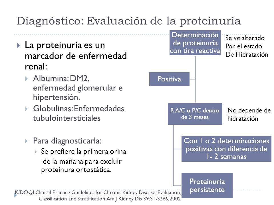Diagnóstico: Evaluación de la proteinuria La proteinuria es un marcador de enfermedad renal: Albumina: DM2, enfermedad glomerular e hipertensión.