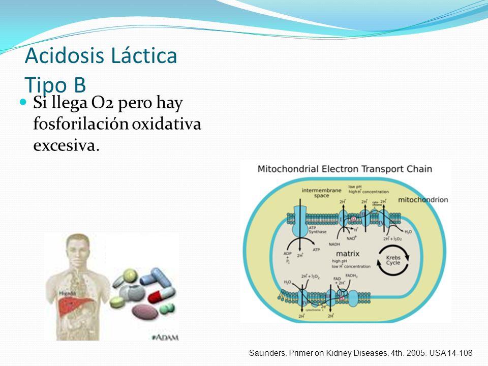 Acidosis Láctica Tipo B Si llega O2 pero hay fosforilación oxidativa excesiva. Saunders. Primer on Kidney Diseases. 4th. 2005. USA 14-108