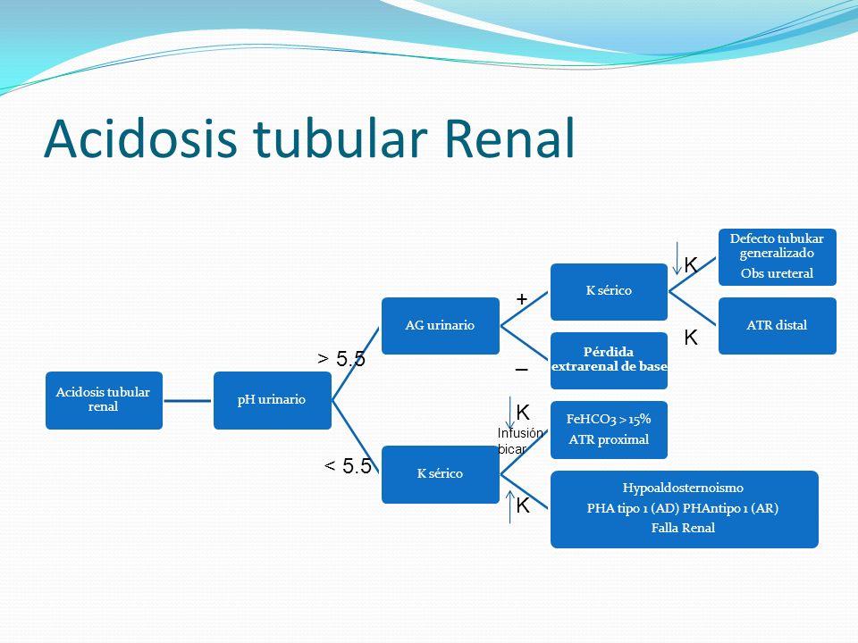 Acidosis tubular Renal Acidosis tubular renal pH urinarioAG urinarioK sérico Defecto tubukar generalizado Obs ureteral ATR distal Pérdida extrarenal d