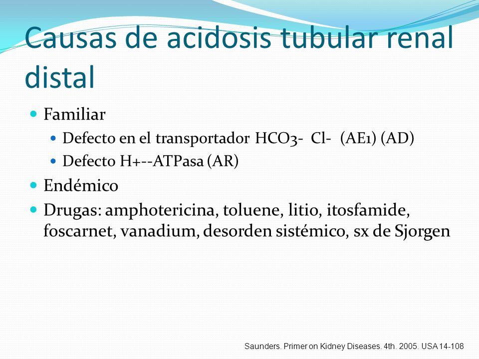 Causas de acidosis tubular renal distal Familiar Defecto en el transportador HCO3- Cl- (AE1) (AD) Defecto H+--ATPasa (AR) Endémico Drugas: amphoterici