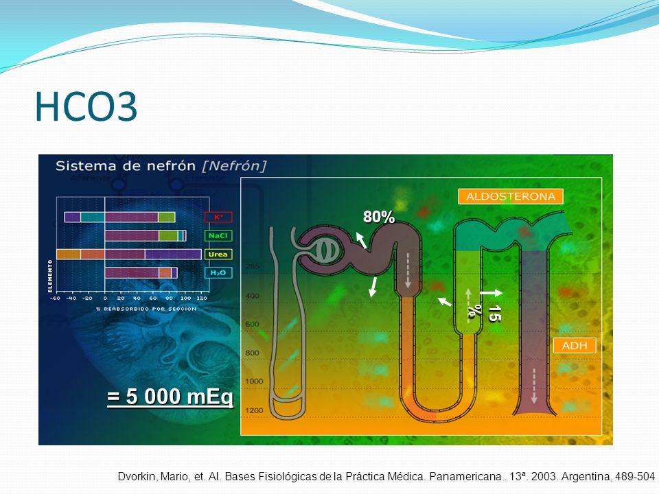 HCO3 80% 15 % = 5 000 mEq Dvorkin, Mario, et. Al. Bases Fisiológicas de la Práctica Médica. Panamericana. 13ª. 2003. Argentina, 489-504