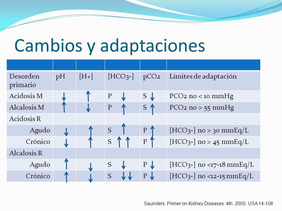 Cambios y adaptaciones Desorden primario pH[H+][HCO3-]pCO2Límites de adaptación Acidosis MPSPCO2 no < 10 mmHg Alcalosis MPSPCO2 no > 55 mmHg Acidosis