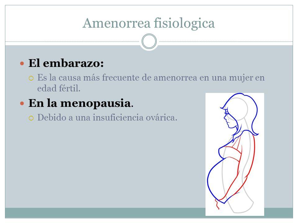 Amenorrea fisiologica El embarazo: Es la causa más frecuente de amenorrea en una mujer en edad fértil. En la menopausia. Debido a una insuficiencia ov